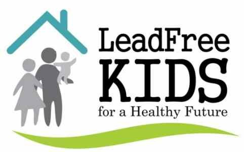 lead testing and screening � mcdonough county health
